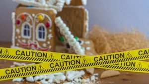 Thumb_gingerbread_house_christmas_disaster__edit