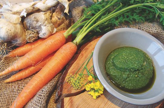 Food Waste - make carrot top pesto