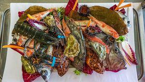 A seafood platter from Oasis Beach Restaurant, Margerita de Savoia