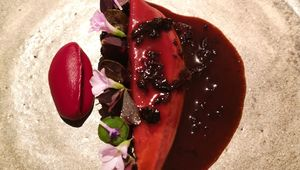 Wild wood pigeon with fermented cherry and dehydrated charred beetroot.
