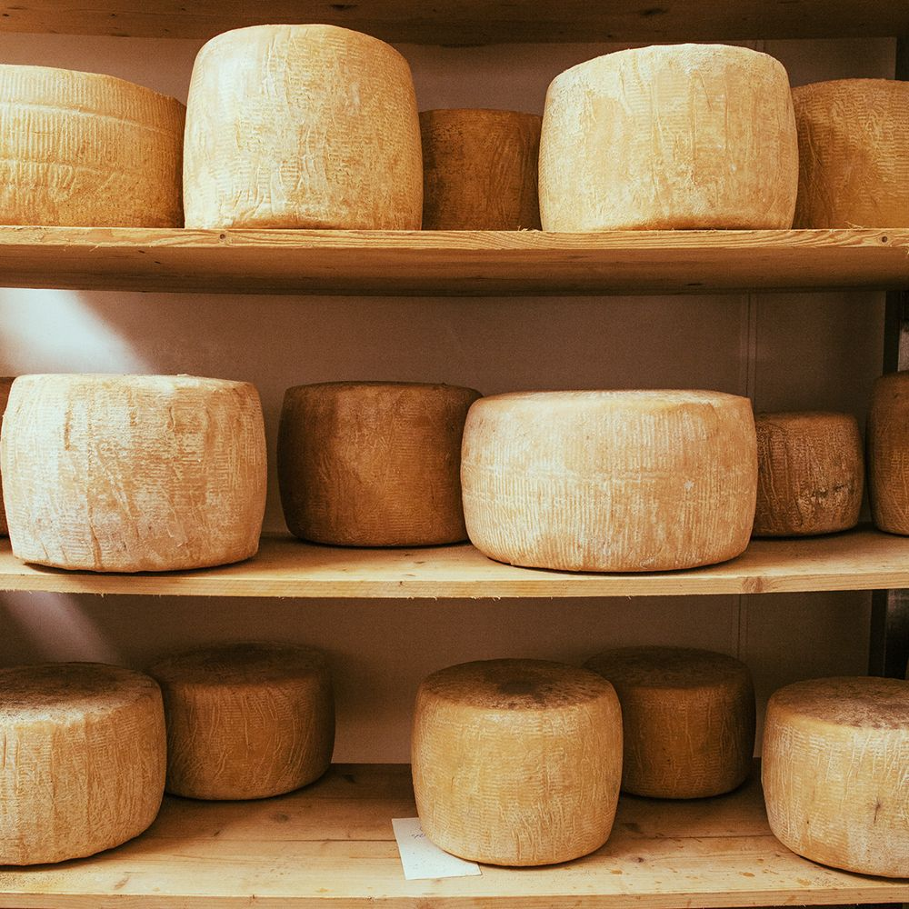 Cheese_on_shelves_gettyimages-551985175_edit