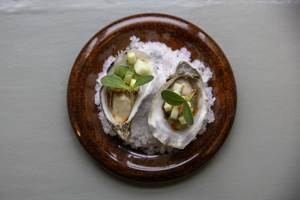 Oysters vn