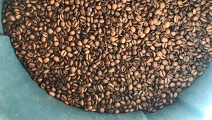 Coffee beans in Imbibe Coffee, Dolphins Barn, D8.