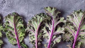 Kale: a local food hero