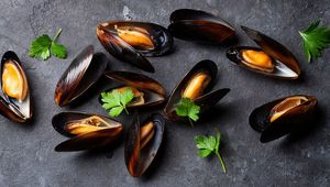 Thumb_getty_mussels_1_main