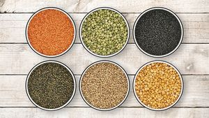 Thumb_lentils_getty_main