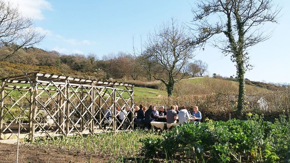 Featured_lunch_in_the_garden_at_river_cottage