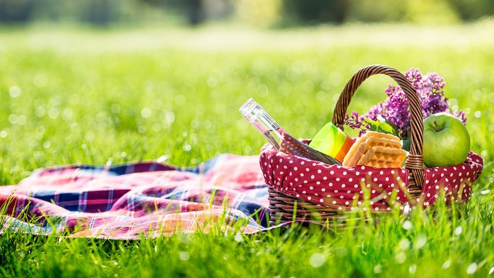 Featured_gettyimages-675379458_picnic_main