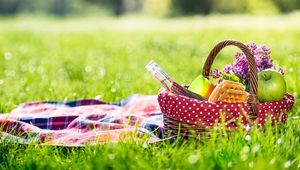 Thumb gettyimages 675379458 picnic main