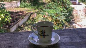 Thumb_nadia_colombia