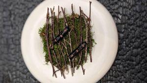 Beetroot roasted overnight on hot embers, smoked hay, pickled elderflower