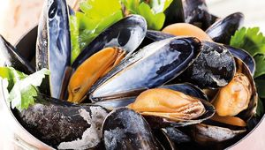Thumb_moules_mariniere_shutterstock_74554108_edit