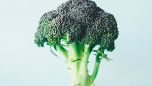 Thumb_broccoli_annie-spratt-m1t-rj1iciu-unsplash