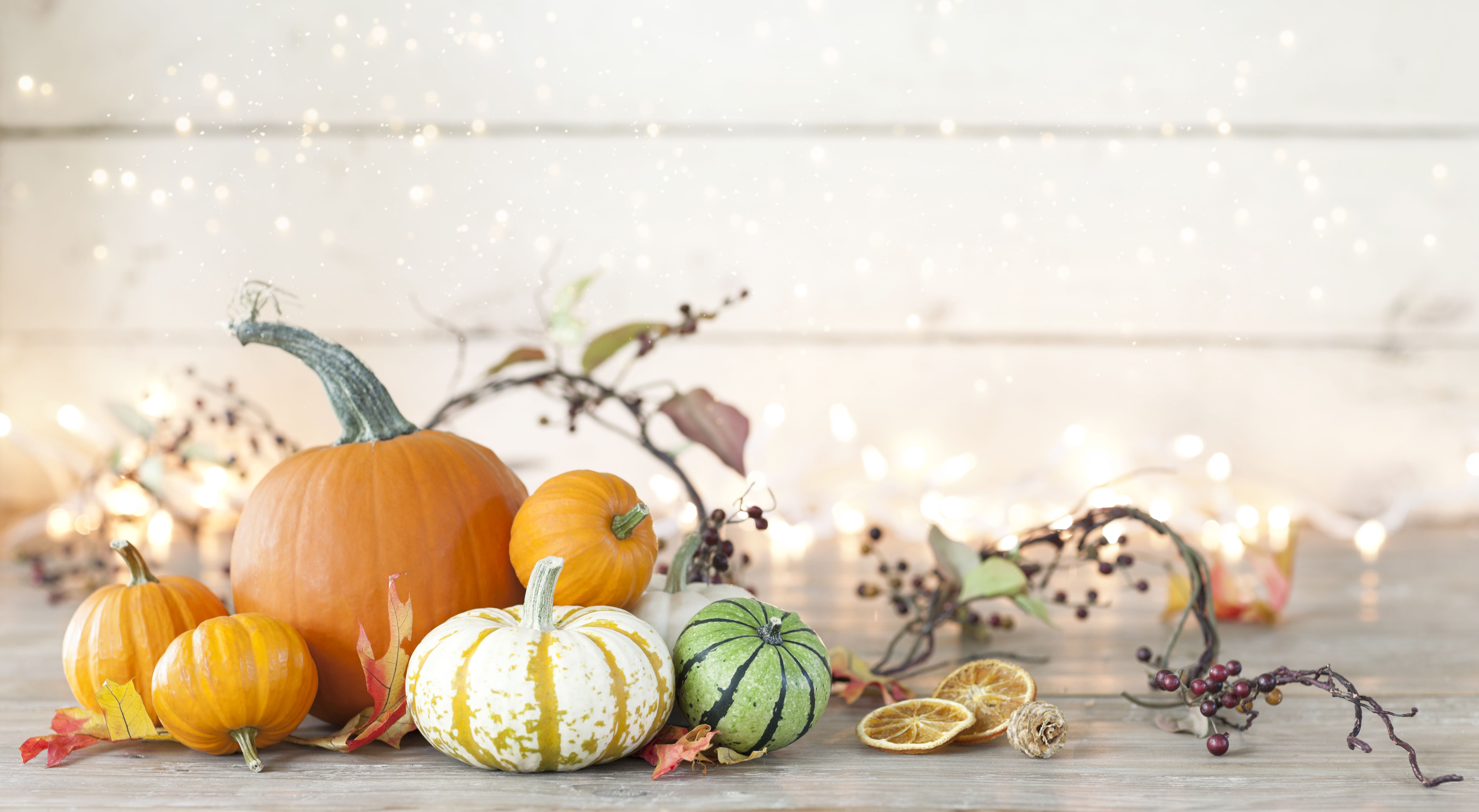 Thanksgiving pumpkins. Credit: Getty Images