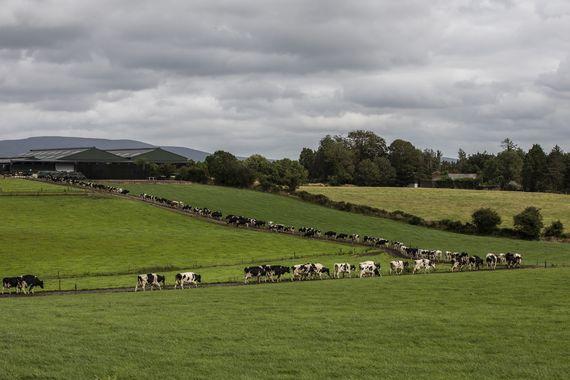 The Hanrahan Farm