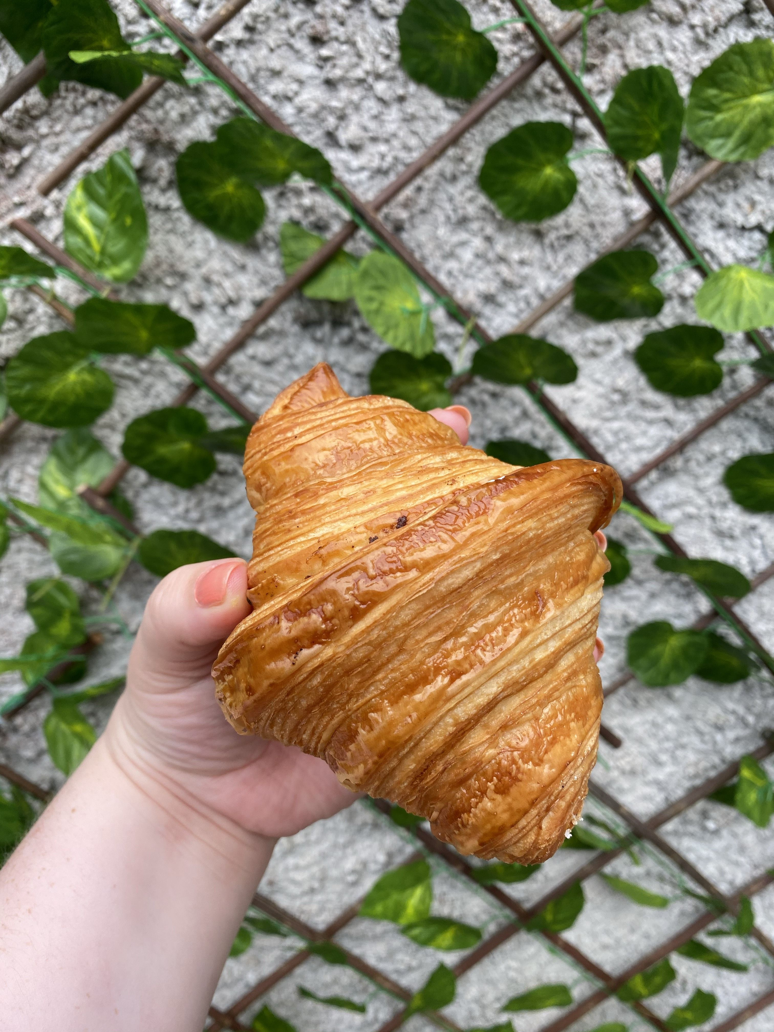 Bread 41's famous croissant.