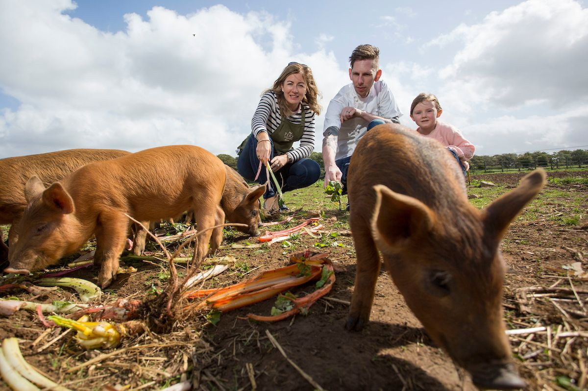 Chef Mike Tweedie of Adare Manor Hotel meeting the pigs at Rigney's Farm, Co Limerick